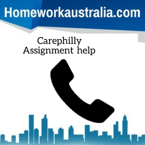 Carephilly Assignment Help