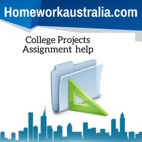 College Projects Assignment Help