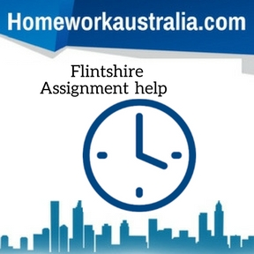 Flintshire Assignment Help