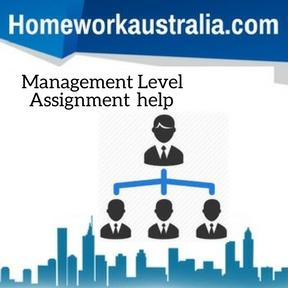 Management Level Assignment help