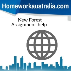 New Forest Assignment Help