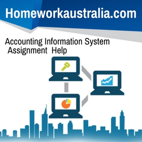 Accounting Information System Assignment Help