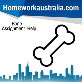 Bone Assignment Help