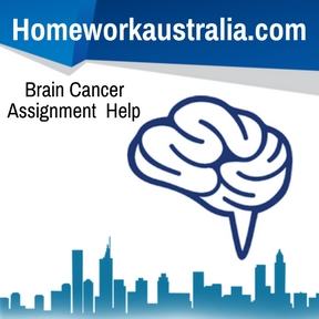 Brain Cancer Assignment Help