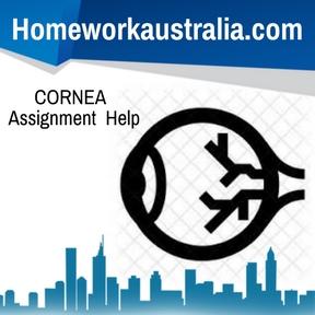 CORNEA Assignment Help