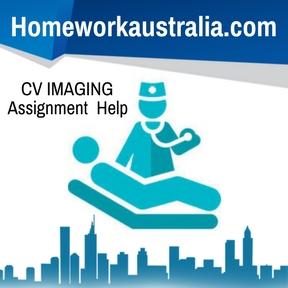 CV IMAGING Assignment Help