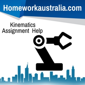 Kinematics Assignment Helpv