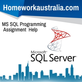 MS SQL Programming Assignment Help
