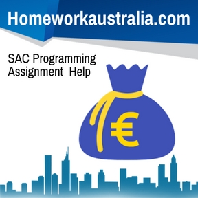SAC Programming Assignment Help