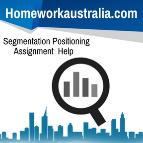 Segmentation Positioning Assignment Help