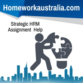 Strategic HRM Assignment Help