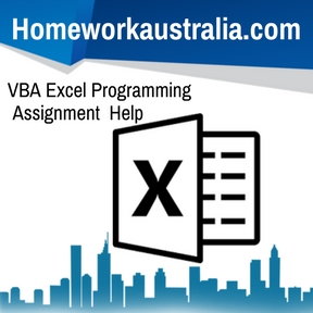 VBA Excel Programming Assignment Help
