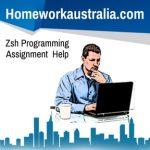 Zsh Programming