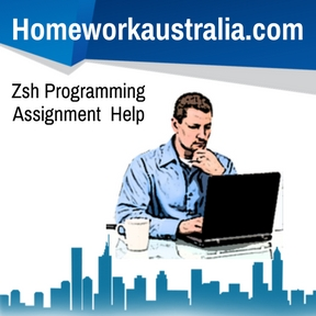 Zsh Programming Assignment Help