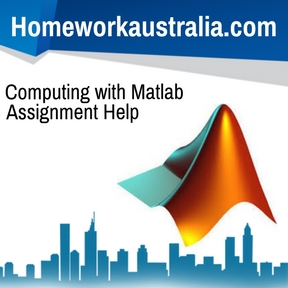 Computing with Matlab Assignment Help