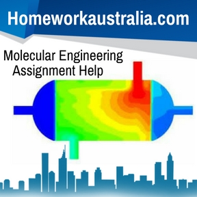 Molecular Engineering Assignment Help