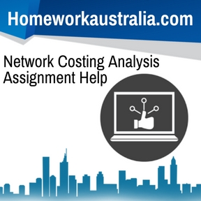 Network Costing Analysis Assignment Help