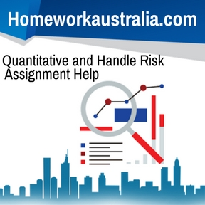 Quantitative and Handle Risk Assignment Help